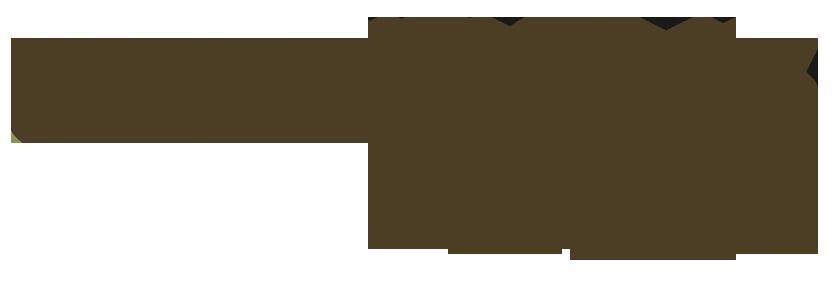 Blumenwiese Floristik & Mehr